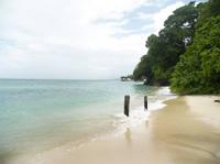 Auswandern in der Dominikanische Republik - viel Strand, viel Leben!