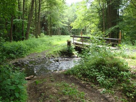Holzbrücke und Wagenfurt zur Überquerung des Baches