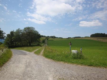 Wir gehen leicht rechts auf den Feldberg