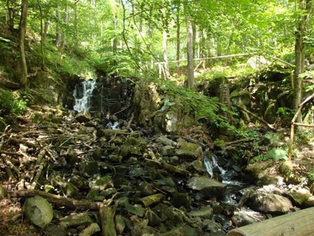 Schwarzbach-Wasserfall am Holzberg