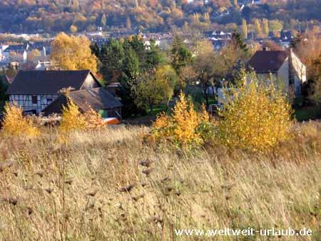 Sauerland im Herbst