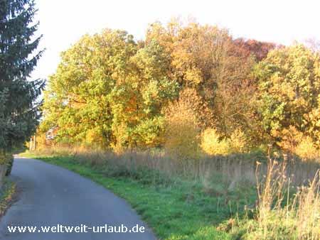 Sauerland Herbst