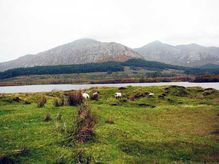 Connemara Nationalpark, Irland