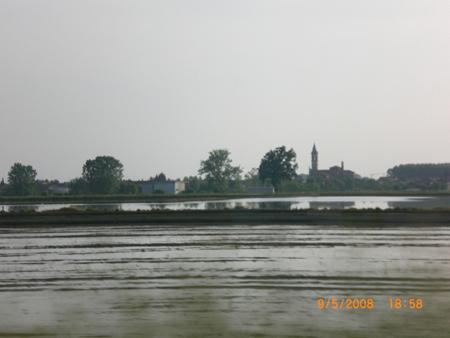 Große Reisfelder