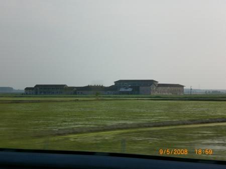 Reisfelder im Grünen