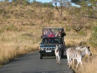 Jepp in Südafrika