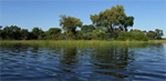 Flusskreuzfahrten Botswana & Zambia
