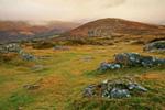 Hügellandschaft Devon Südwest-England
