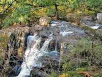 Bracklinn Falls in der Nähe von Callander, Schottland