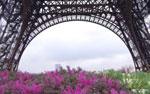 Ferienwohnung Frankreich