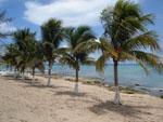 Hotel in die Karibik