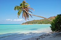 Strand in Seychellen