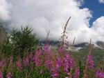 Aosta Cervinia