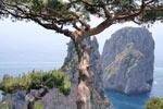 Sehenswerte Felsen auf der Insel Capri