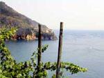 Wanderweg an der Küste in Ligurien, Italien
