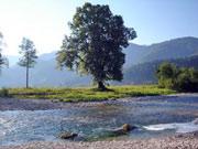 Urlaub in Niederösterreich - der Fluss Ybbs bei Hohenlehen