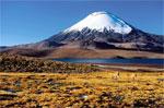 Rundreisen Chile