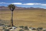 Rundreisen durch Südafrika