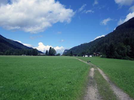Wiesenweg nach Berg