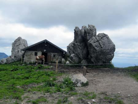 Kuhstall der Steinlingalm