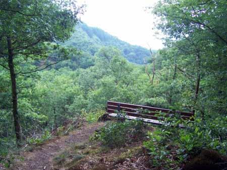 Aussichtspunkt Liesertal