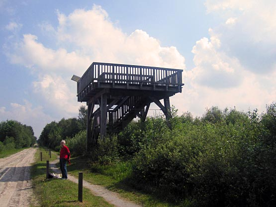 Aussichtsturm aus Holz