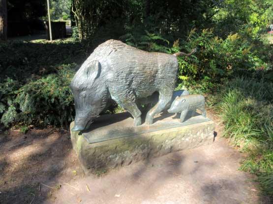 Wildschweine Kurpark Bad Bergzabern