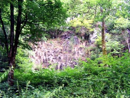 Basaltsäulen Wolfsschlucht