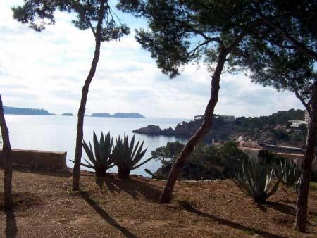 Blick Insel Malgrats