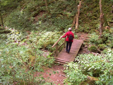 Brücke Wanderweg Eifel