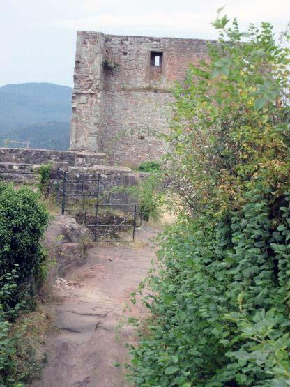 Auf der Burgruine