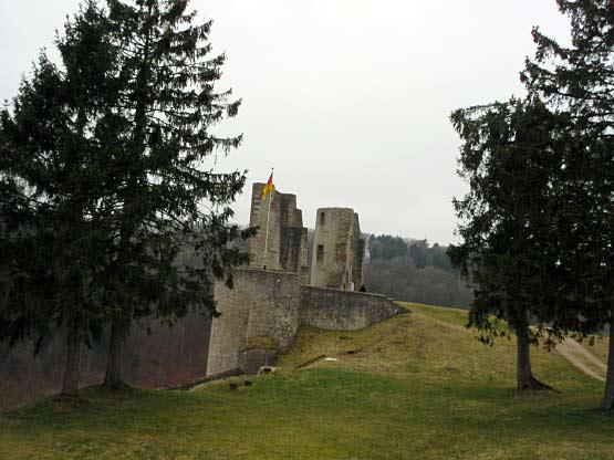 Burgruine von oben
