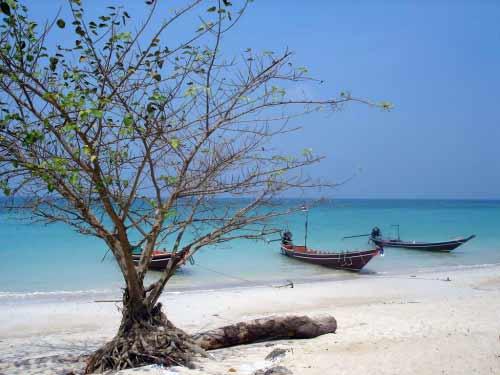 Chaloklum - Thailand