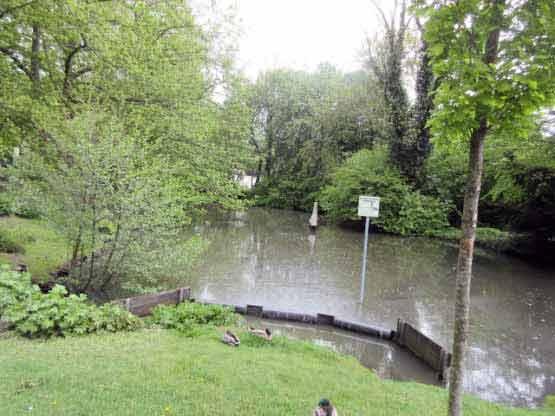 Städttischer Teich