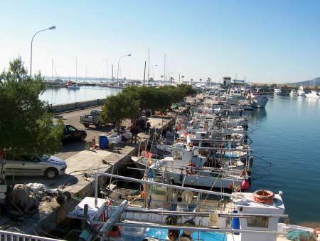 Fischerboote im Hafen von Alcudia