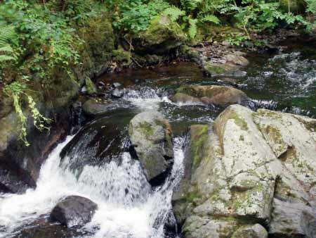 Flussbett Kleiner Kyll