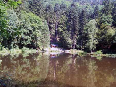 Grillhütte See Manderscheid