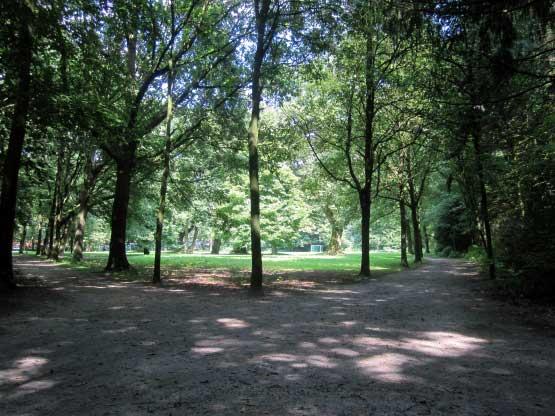 Der Julianenpark in Leer, eine Oase der Ruhe
