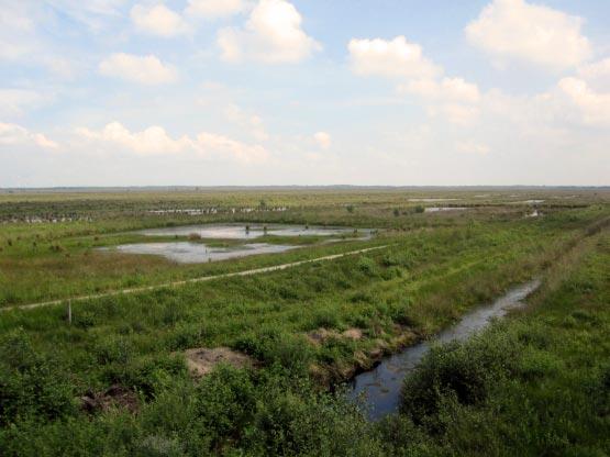 Moor Wasser, Seen, Kanäle