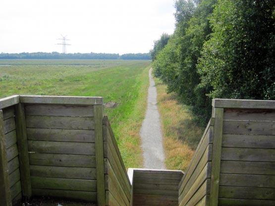Moor Wanderweg