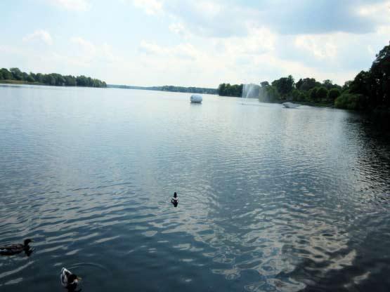 Großer Müllroser See
