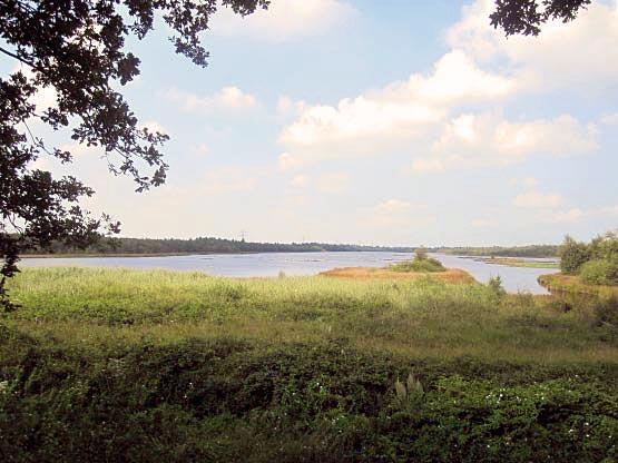 Neudorfer Moor mit großem See