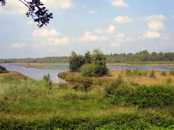Neudorfer Moor