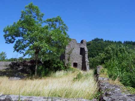 Ruine Oberburg