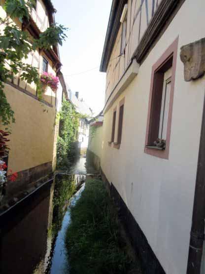 Der Klingbach fließt nach Klingenmünster