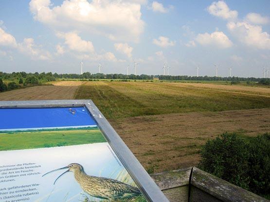 Blick über das Stapeler Moor