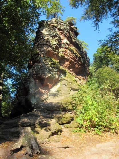 Felsen zwischen den Trifelsburgen