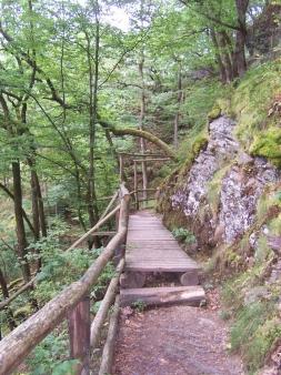 Wanderpfad Eifel
