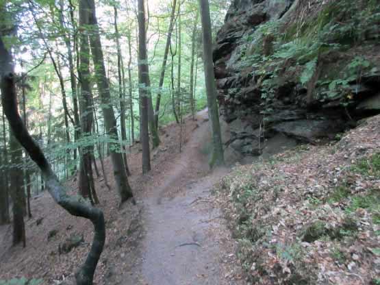 Wanderpfad am Büttelfelsen