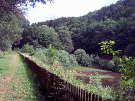Weg zum Sauerbrunnen